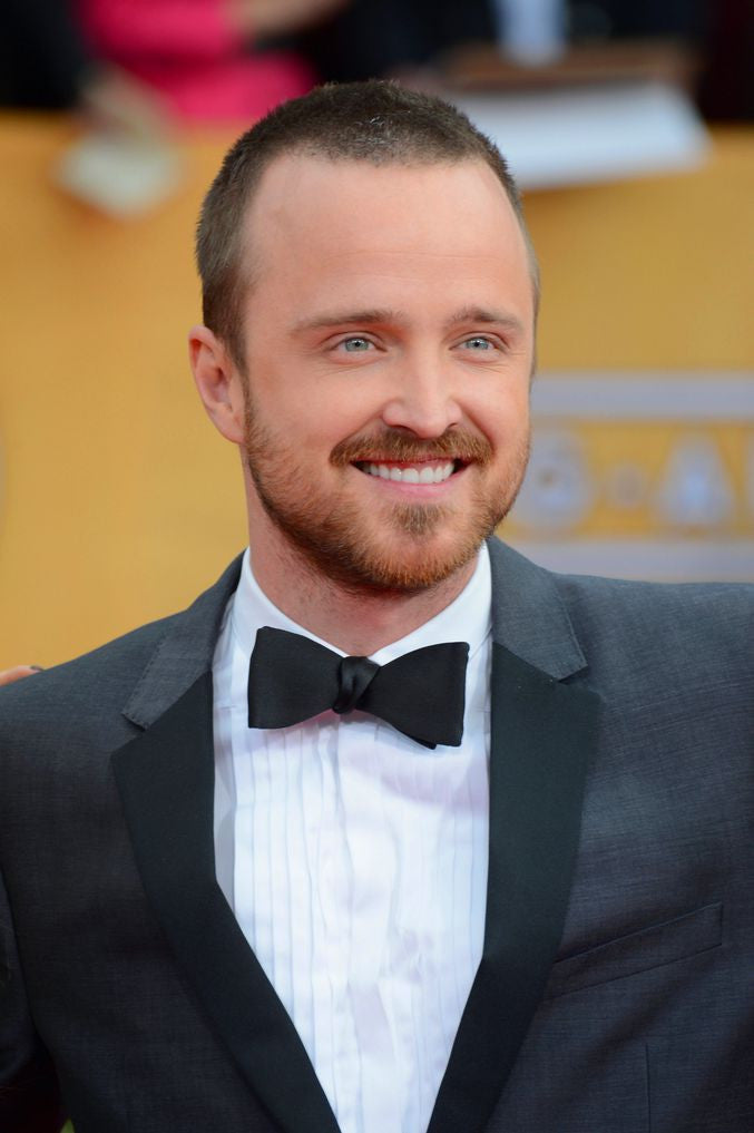 Aaron Paul Artists Silk Print Poster 025