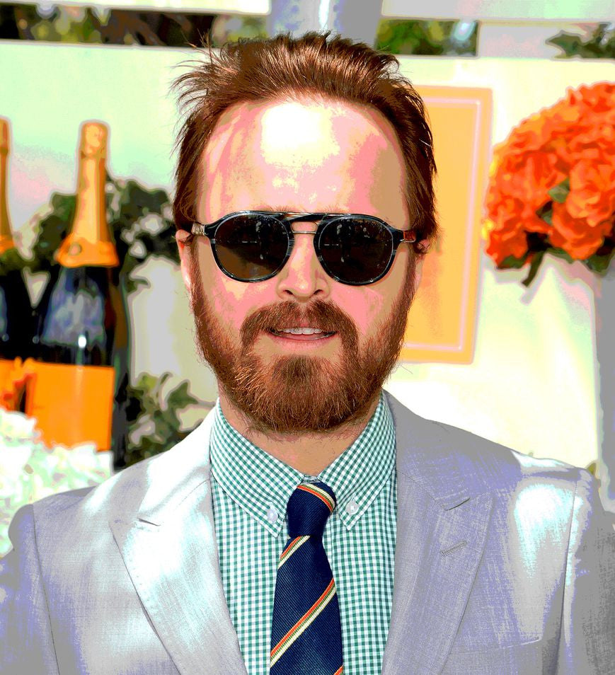 Aaron Paul Artists Silk Print Poster 031