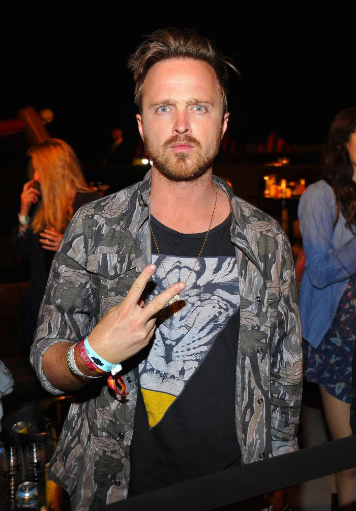 Aaron Paul Artists Silk Print Poster 051