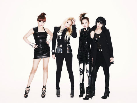 2NE1 K-pop Silk Print Music Poster 003