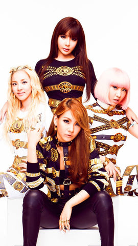 2NE1 K-pop Silk Print Music Poster 005