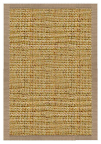 Spice Sisal Rug with Pistachio Shell Cotton Border - Free Shipping