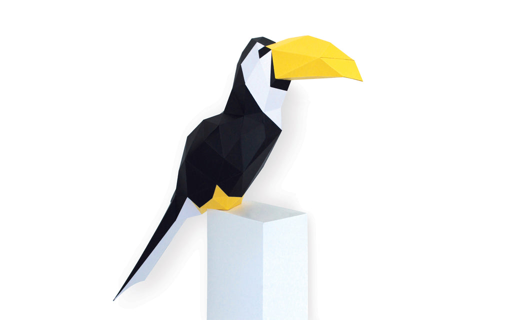 Build Your Own 3D Model - Toucan