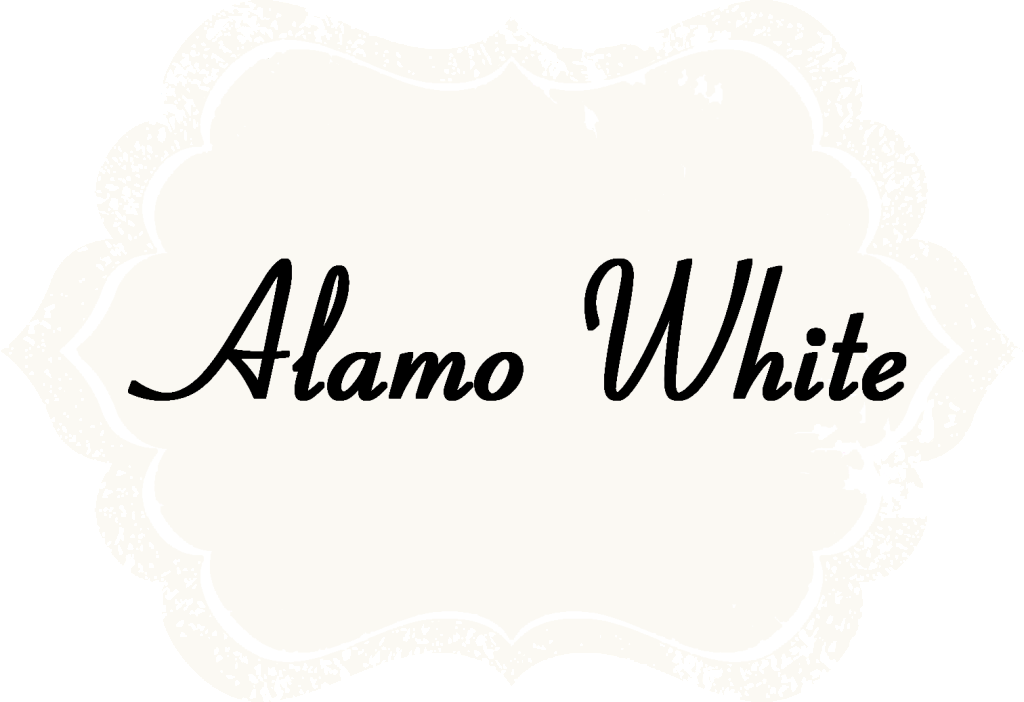 Alamo White Chalk Acrylic Paints by Shabby Paints