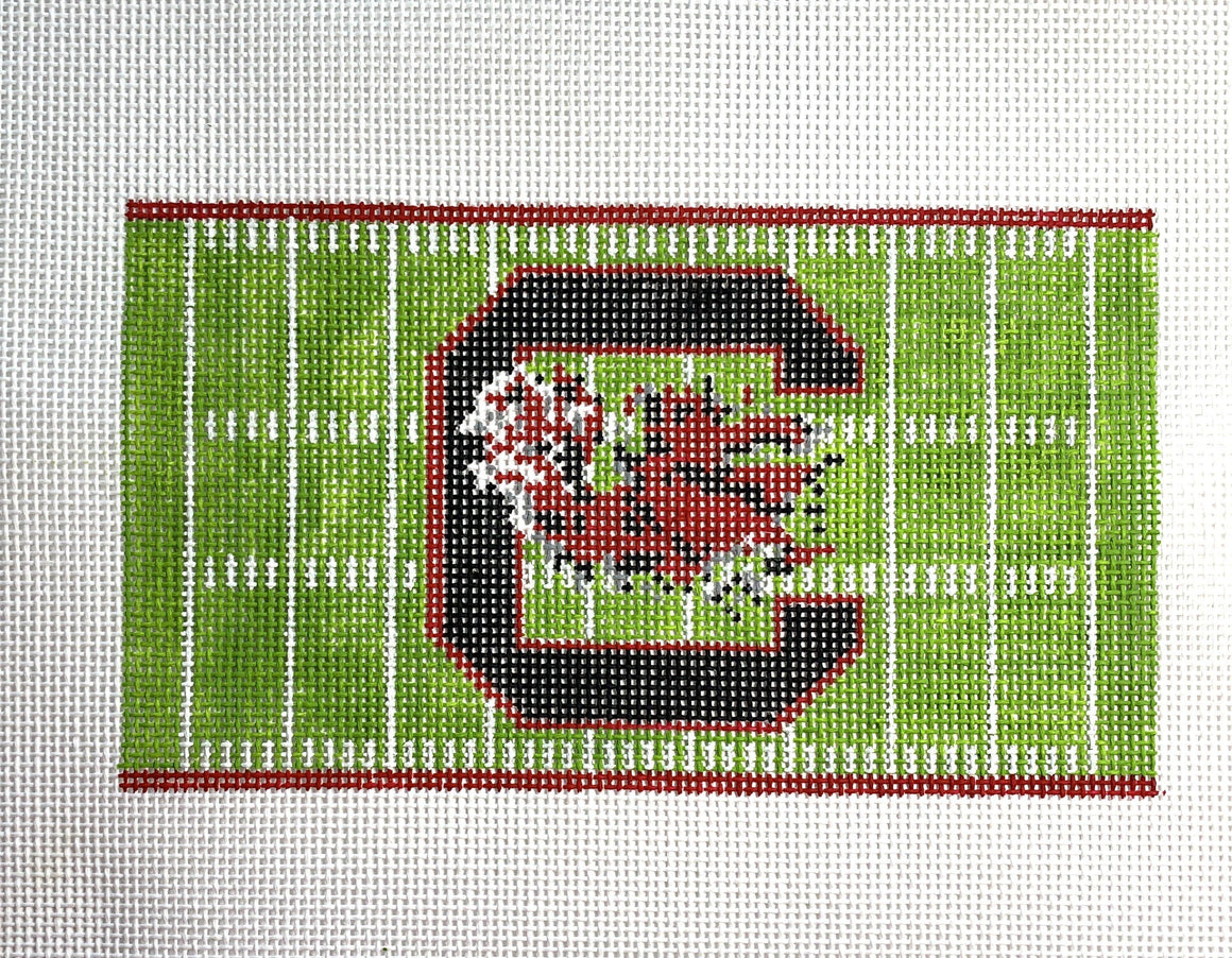 Football Field Canvas