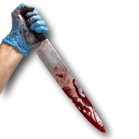 Bloody Kitchen Knife