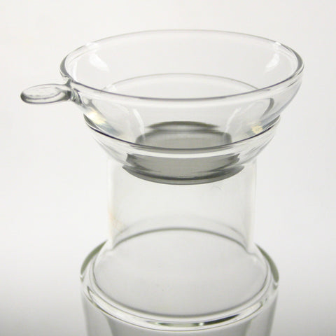 Fine filter glass infuser