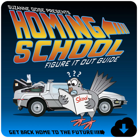 Homing School: A Figure it Out Guide - Flip Flop Spanish