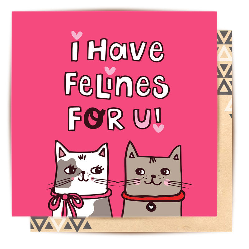 I Have Felines For You