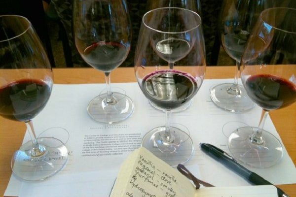 How to hold your own blind wine tasting