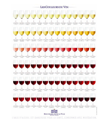 Poster featuring some of the aromas of wine - Les Aromes