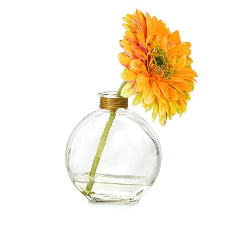 Flower Daisy Orange & Green in Glass Bottle
