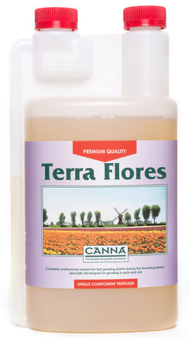 Canna Terra Flores (bloom)