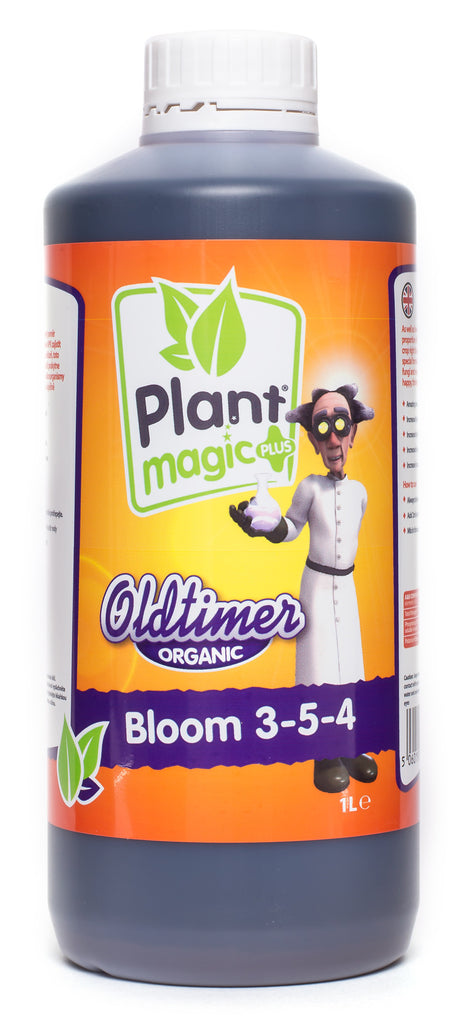 Plant Magic Oldtimer Bloom