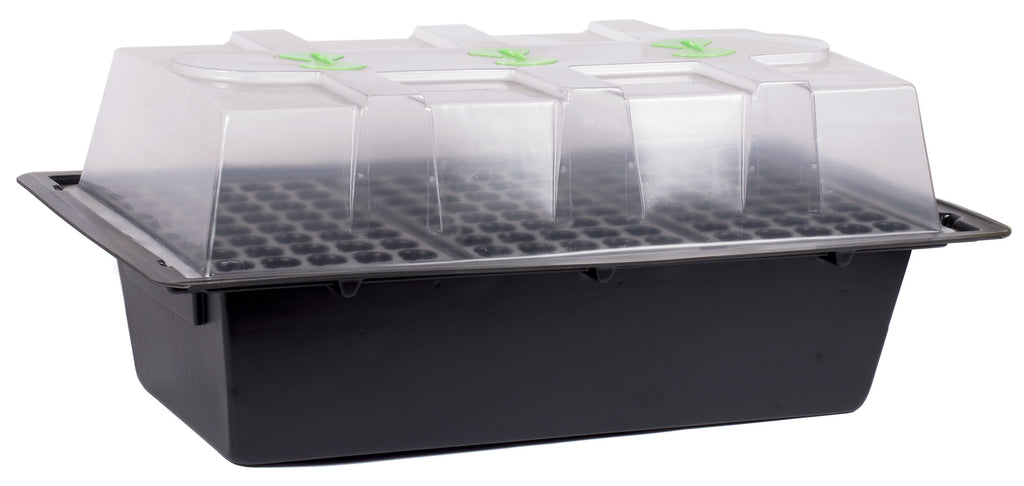 X-Stream Aeroponic Propagator (heated) 120 Site