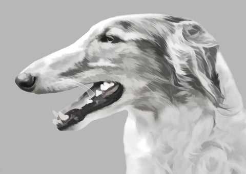 "Borzoi - ""Head Study"" (Design 040)"