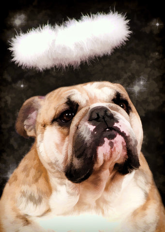 "Bulldog - ""Angel"" (Design 045)"