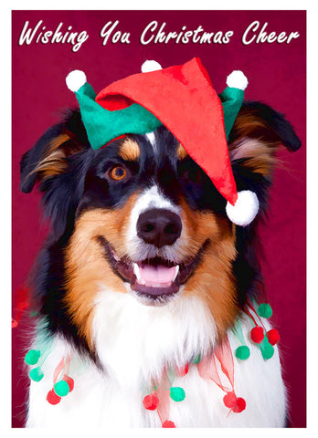 "Australian Shepherd Christmas - ""The Jester"" (Design X027)"