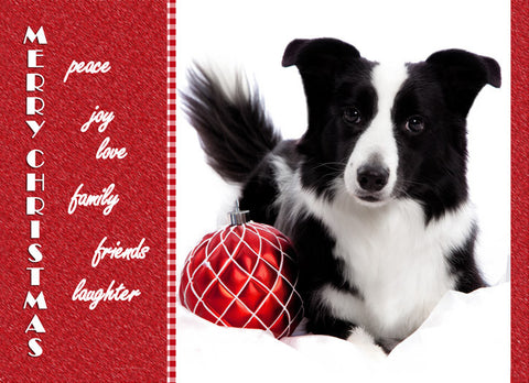 "Border Collie Christmas - ""All My Best"" (Design X029)"