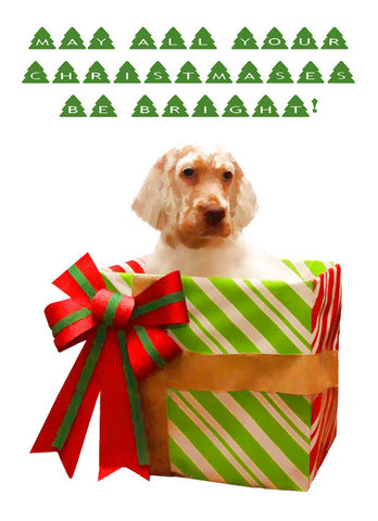 "English Setter - ""The Perfect Gift"" (Design X016)"