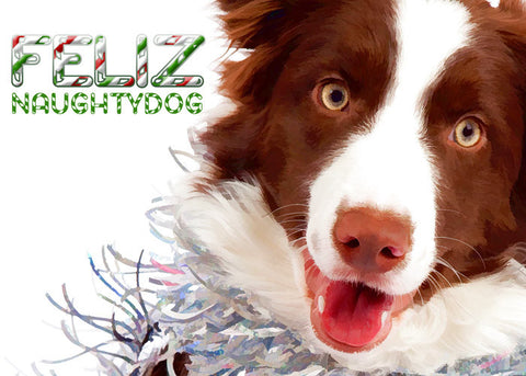 "Border Collie Christmas - ""Naughty Dog"" (Design X035)"