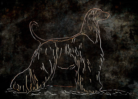 "Afghan Hound - ""Ancient Hound"" (Design 108)"