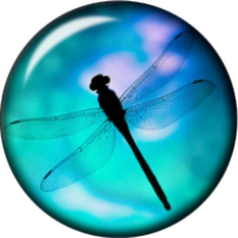 Snap button Domed Dragonfly Interchangable Jewelry  12mm