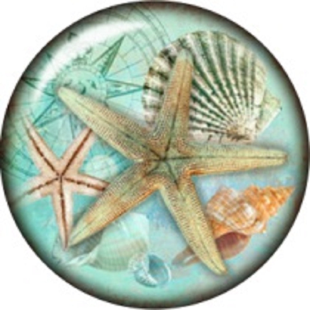 Snap button Beach starfish shells 18mm charm chunk interchangeable