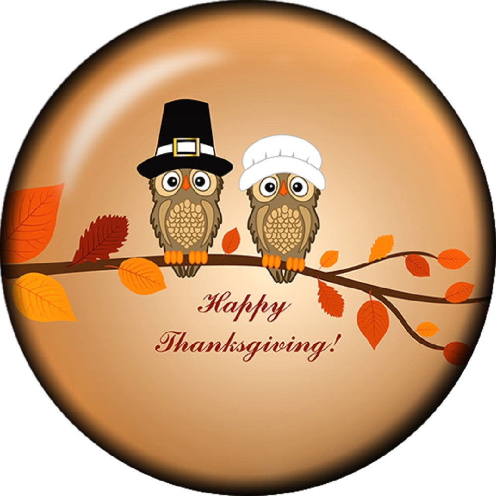 Snap button Owl Fall Happy Thanksgiving 18mm charm chunk