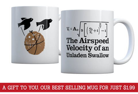 The Airspeed Velocity of an Unladen Swallow Mug - $1.99