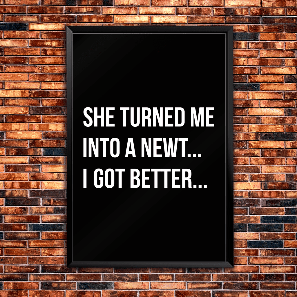 She Turned Me Into A Newt! ... I Got Better - Poster