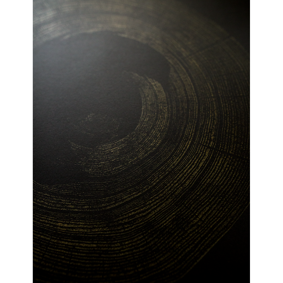 """Heart Rot Elm"" - Ochre on Black Paper"