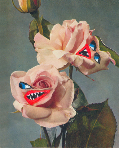 THE ANGRY ROSES, 2/PRINT