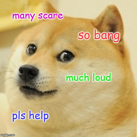 doge scared of fireworks