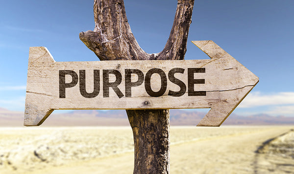 Finding your true purpose