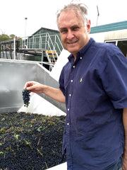 Don with shiraz fruit in the destemmer hopper.