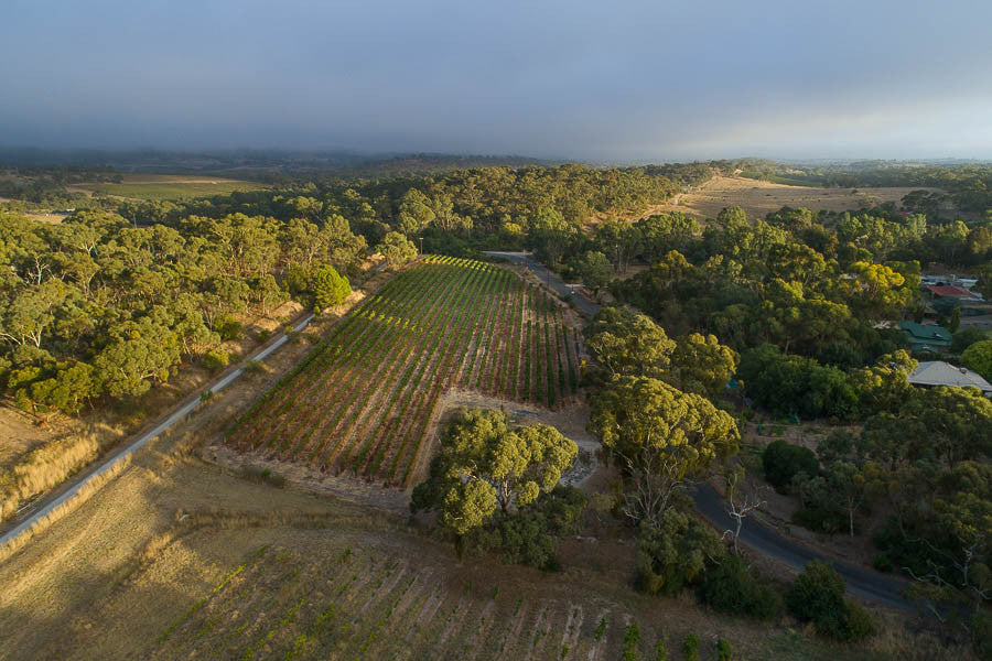 Quality Wines from Clare Valley, South Australia