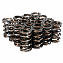 Skunk2 Pro Series XP Valve Springs B Series VTEC