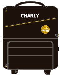 CHARLY DORADOS TRAVEL SMALL BAG 2019-2020