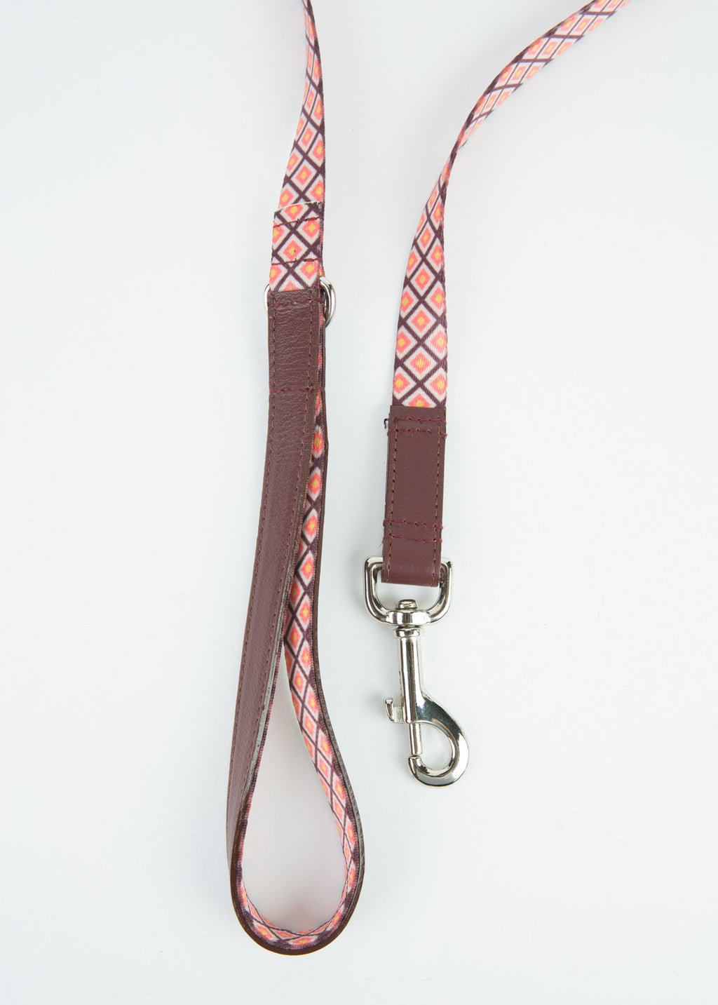 Ware of the Dog Square Webbing Dog Leash