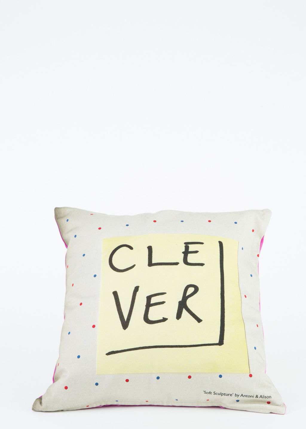 Clever/Stupid Cushion Cover