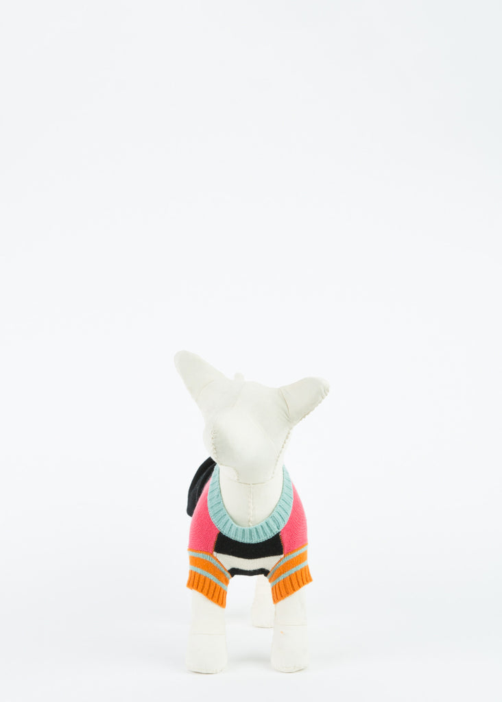 Crazy Stripe Dog Pullover