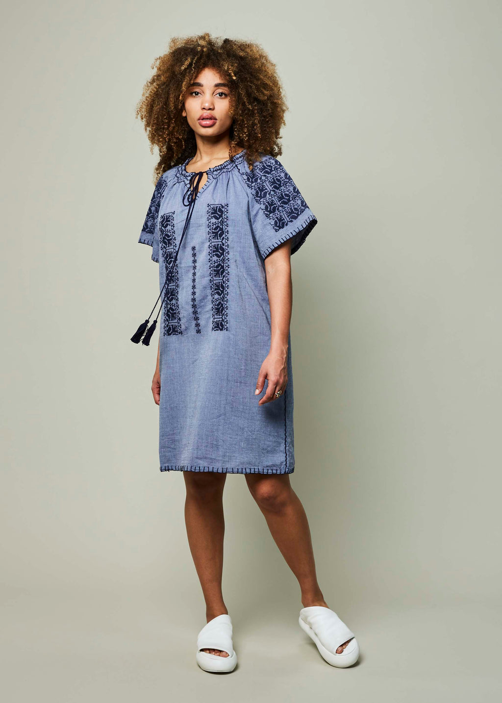 Amos Embroidered Dress