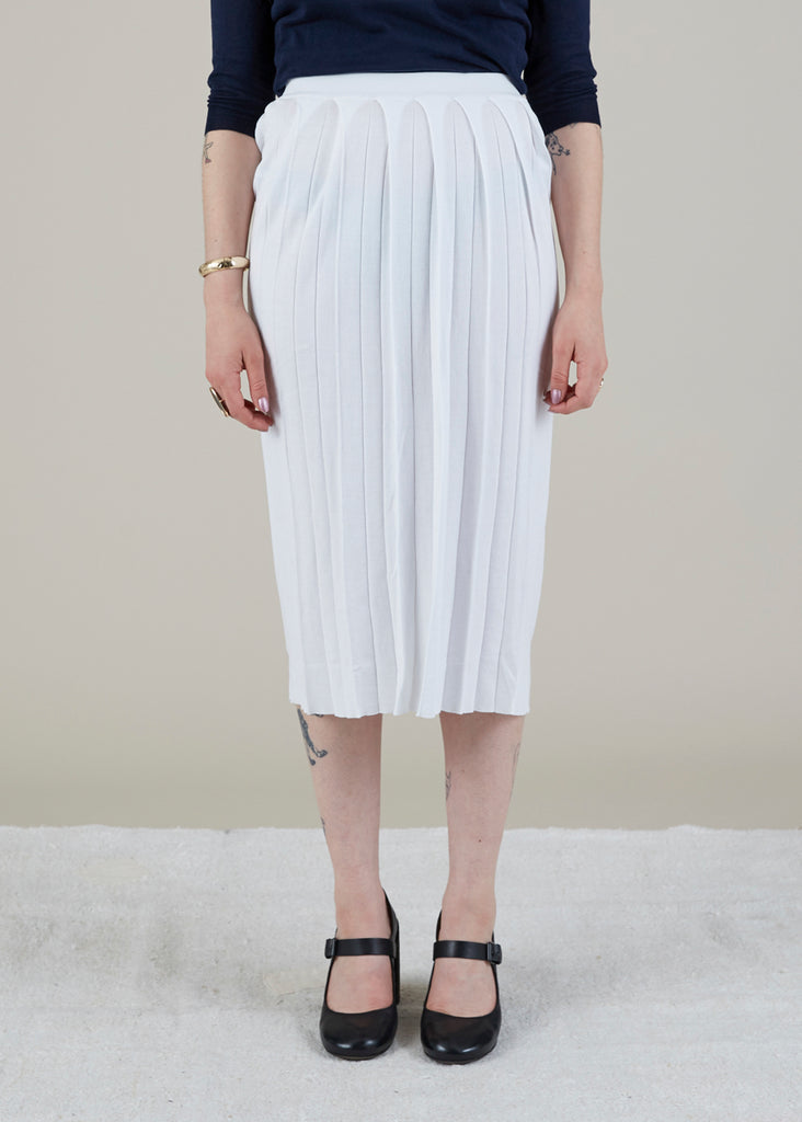 Wide Pleat Skirt