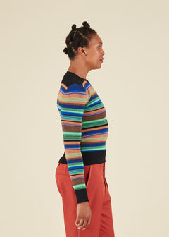 Variegated Stripe Crewneck Sweater