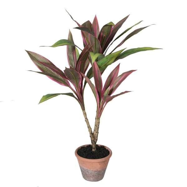 Artificial Potted Cordyline Plant