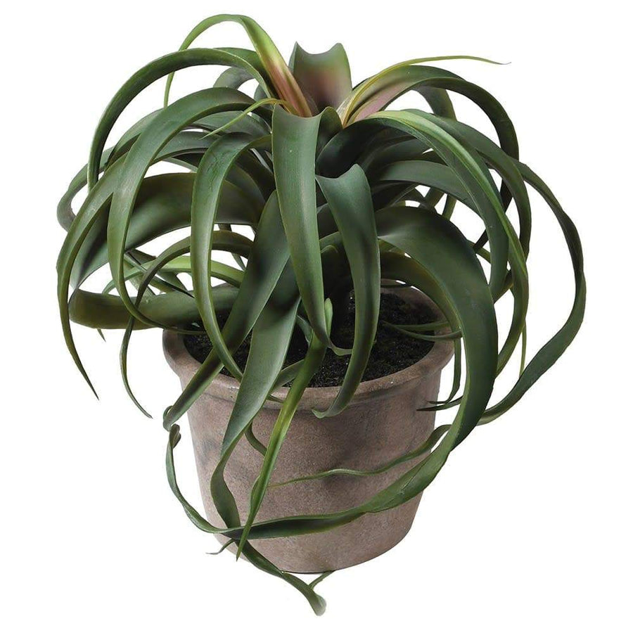 Artificial Potted Tillandsia Plant
