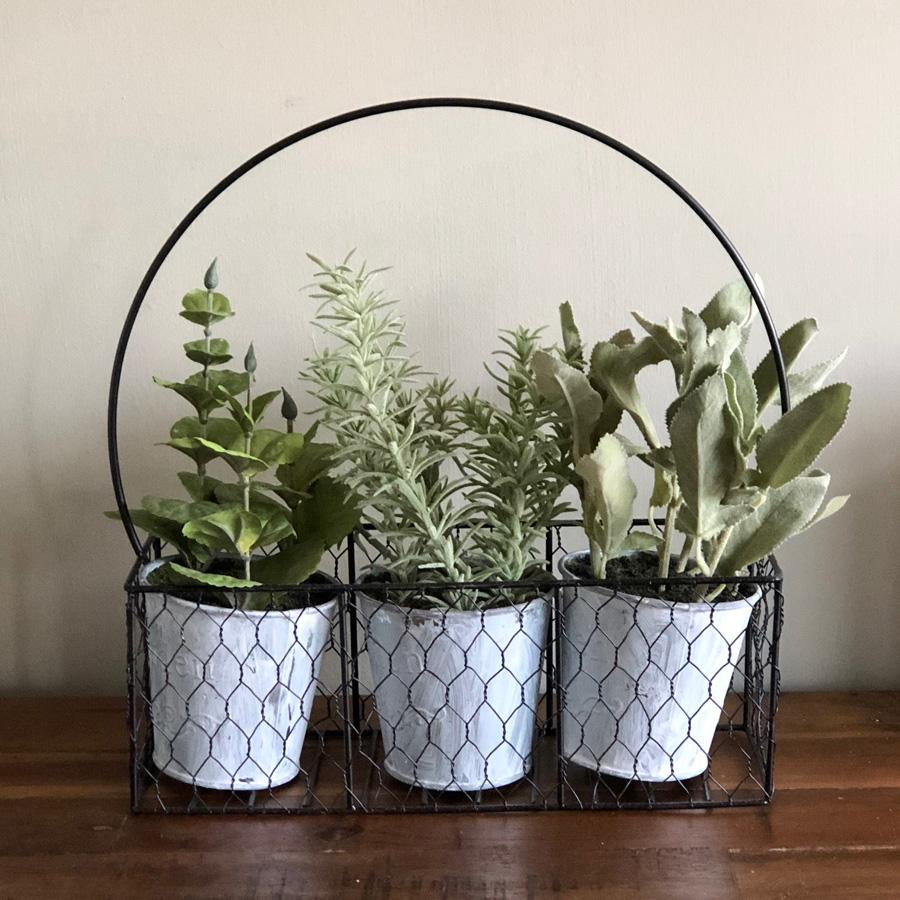 Herbs in a Rustic Wire Holder | Farthing 8
