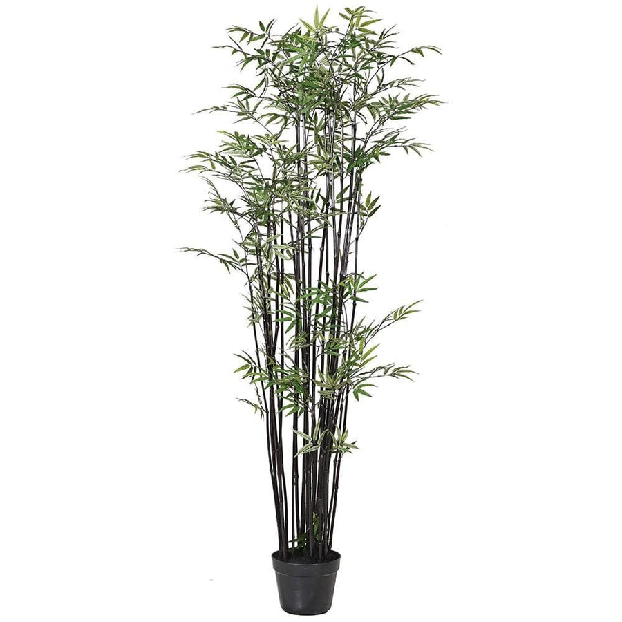 Tall Faux Black Bamboo Tree at the Farthing