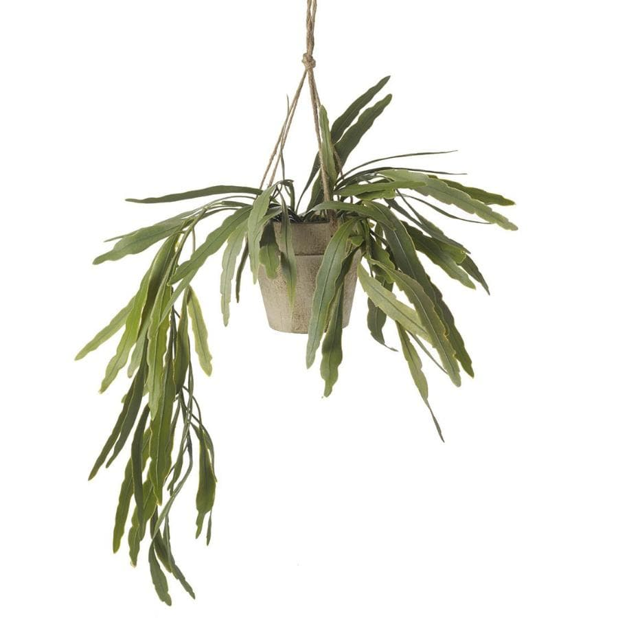 Artificial Potted Hanging Rhipsalis